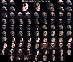 Different Lighting of a Skull by AshenCreative