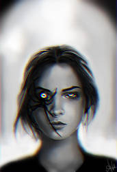 Spider by AshenCreative