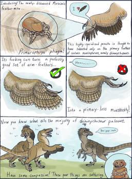How Raptors Lost Their Primaries by EWilloughby