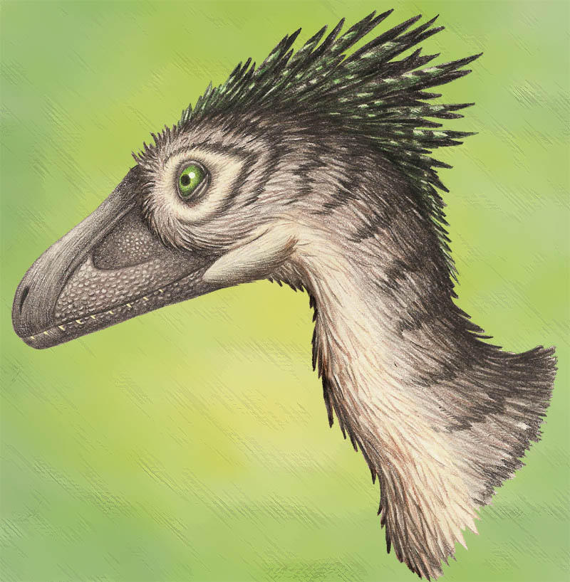 Deinonychus Portrait by EWilloughby