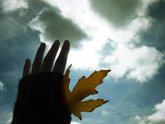 Fall in Hand by CeruleanCaelum