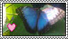 Butterfly Stamp by Kleiner-Schmetterlin