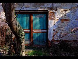 window by fruitsoflunacy
