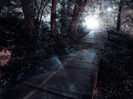 Park Walk at Night by KBeezie