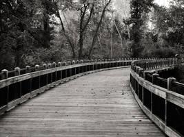 Trestle Trail by KBeezie