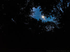 Finding Moonlight by KBeezie