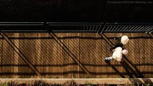 Boardwalk Shadows by KBeezie