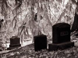 Greenwood Cemetery II (930nm IR) by KBeezie