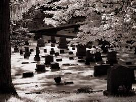 Greenwood Cemetery III (930nm IR) by KBeezie