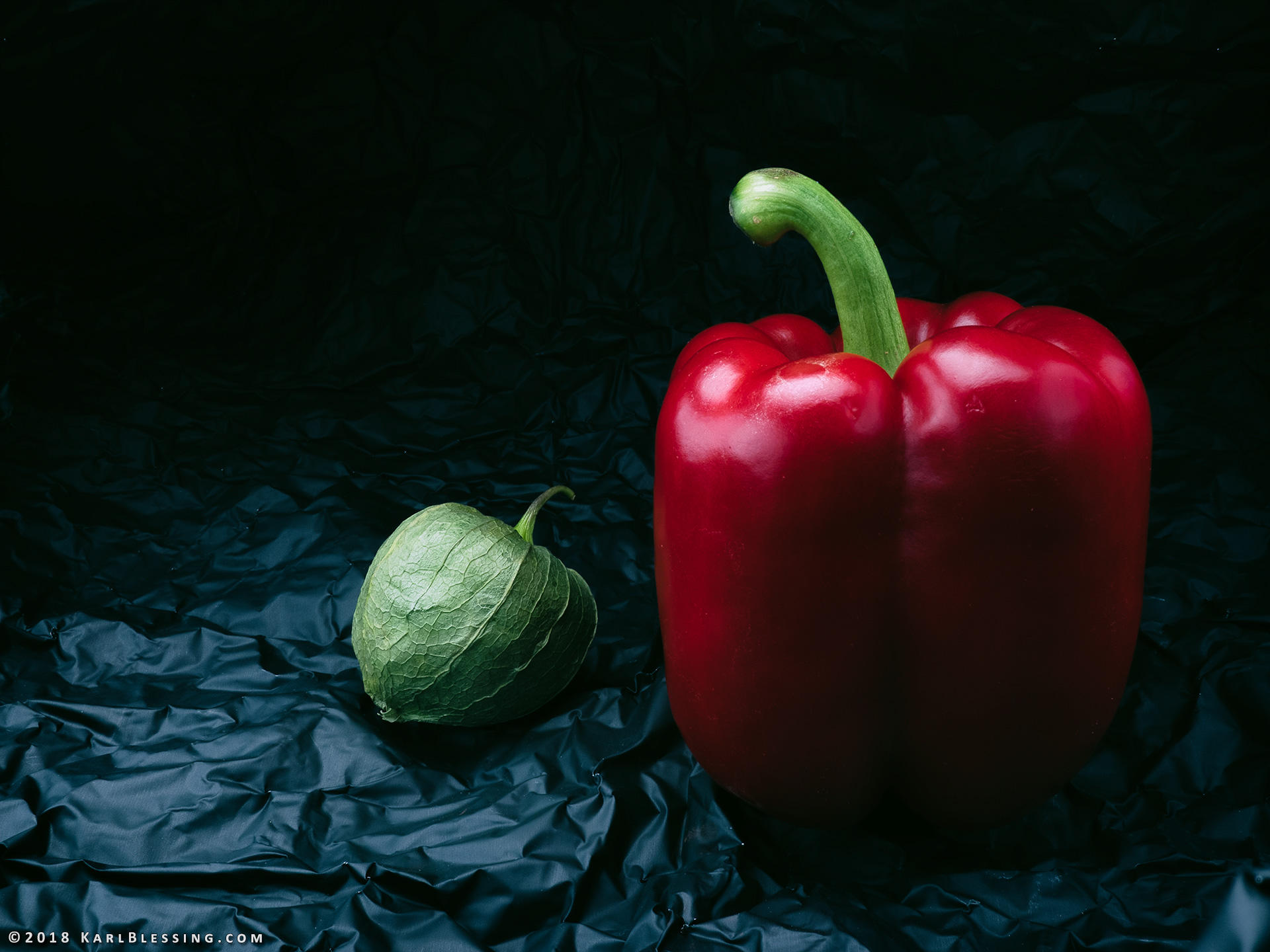 Tomatillo and Pepper (Digital Reference) by KBeezie
