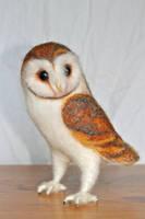 Needle felted Barn Owl by Yvonnesworkshop