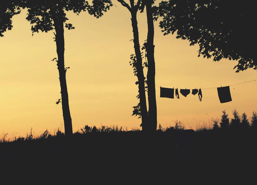 Summer wardrobe by SpongySponge