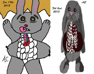 Stuff Bunny Compared by LiluPooka