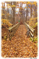 Little Autumn Bridge by danmoore