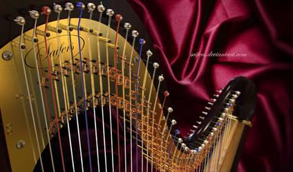 Harp close-up by Saifers