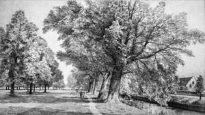 Breda River Mark by LotharZhou
