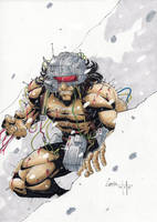 Weapon-x by camillo1988
