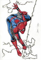 Spidey by camillo1988