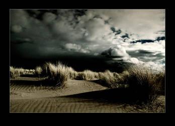Dead End by raun