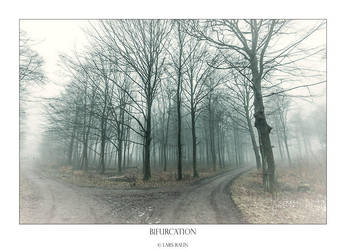 Bifurcation by raun