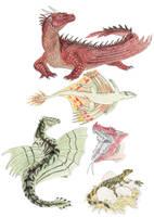Western Dragon by DragonlordRynn