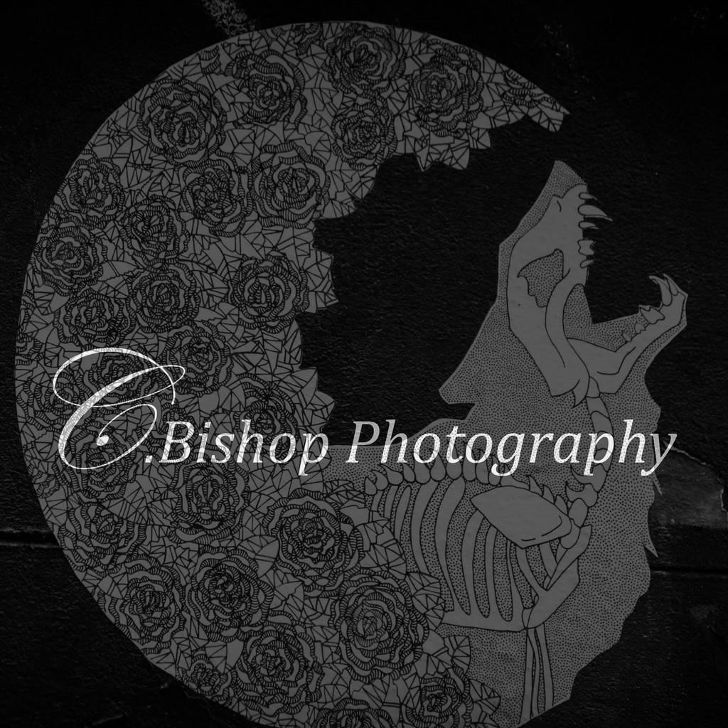 yeahBISH's Profile Picture