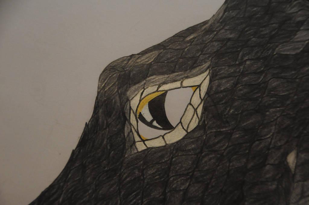 A dragons eye (a sneak peak) by WhiteDemonClaw