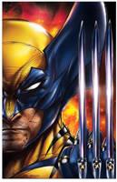 Wolverine by jamietyndall