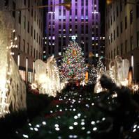 Merry Christmas, everyone!!!  (analogue) by maxlake2