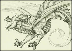 Attack! by Tir-Goldeness