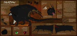 Shadow ~Character sheet 2015~ by Tir-Goldeness