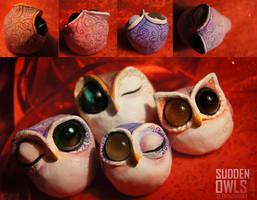 Sudden Owls: Quartet by erebus-odora