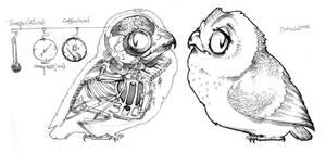 :: cute skeleton owl :: by erebus-odora