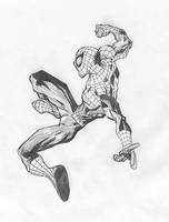 Spiderman by SyntheticFlame