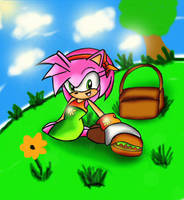 Amy Rose at picnic by kslrmine