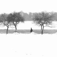 Snow walk by lostknightkg