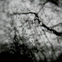 Rain outside by lostknightkg