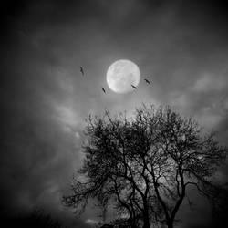 Lunar Echoes by lostknightkg