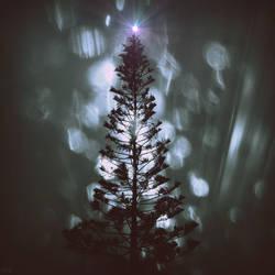 Seasons Greetings by lostknightkg
