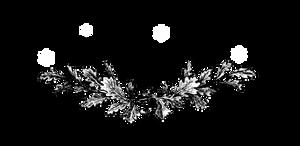 D89hljr-633adc60-1d1a-4441-a8ec-6bbe786ddf52 by AusWolf666