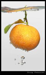 Orange n fresh... by lessysebastian