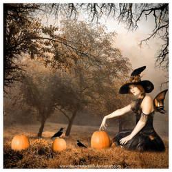 Halloween by DusterAmaranth