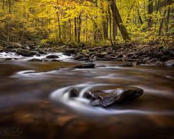 Ricketts Glen Creekbed Flow by ryangallagherart