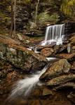 B. Reynolds Falls - Ricketts Glen, PA by ryangallagherart