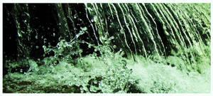 H2o by Iguanadongreen