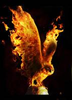Bird of Fire by Sagitarii