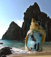 Found on the Beach by Sagitarii