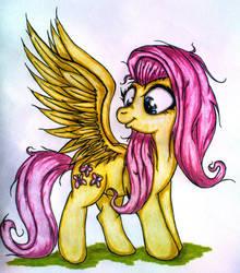 Fluttershy's wings by Tomek2289
