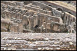 Colosseum4 by AlexDeeJay