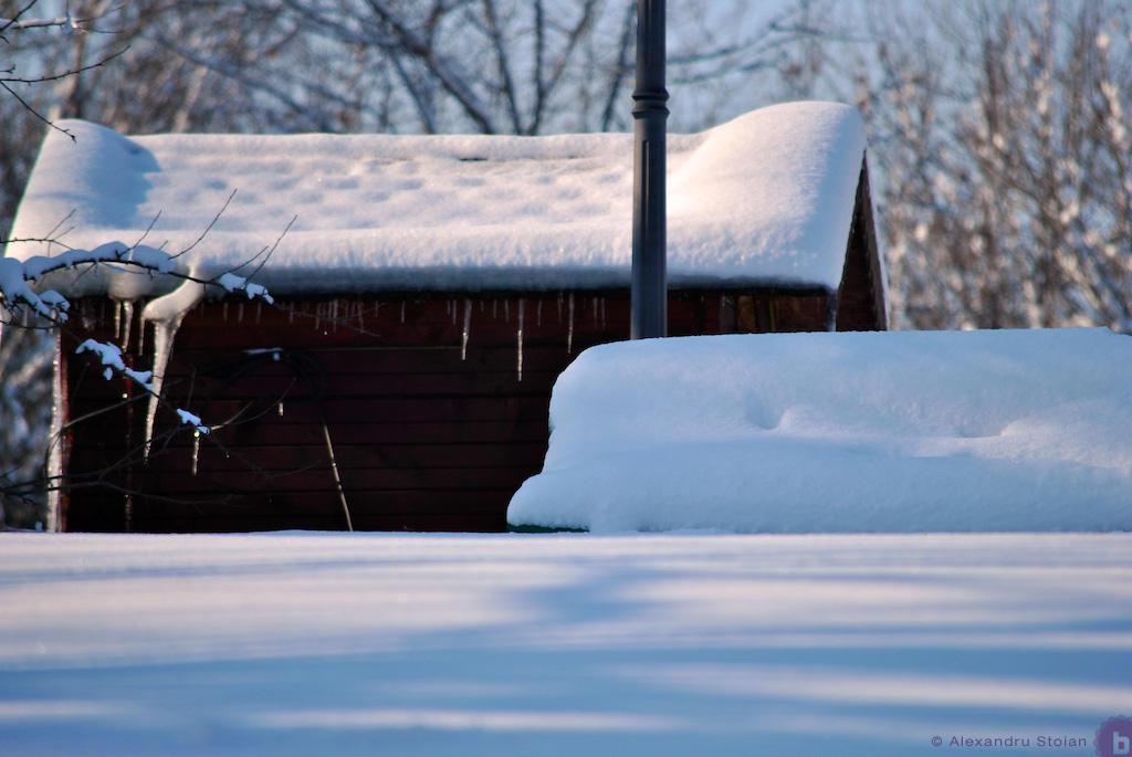 Snow 01 by AlexDeeJay